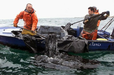 Prestige Local Fishermen